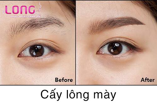 cay-long-may-co-phuc-tap-khong-1